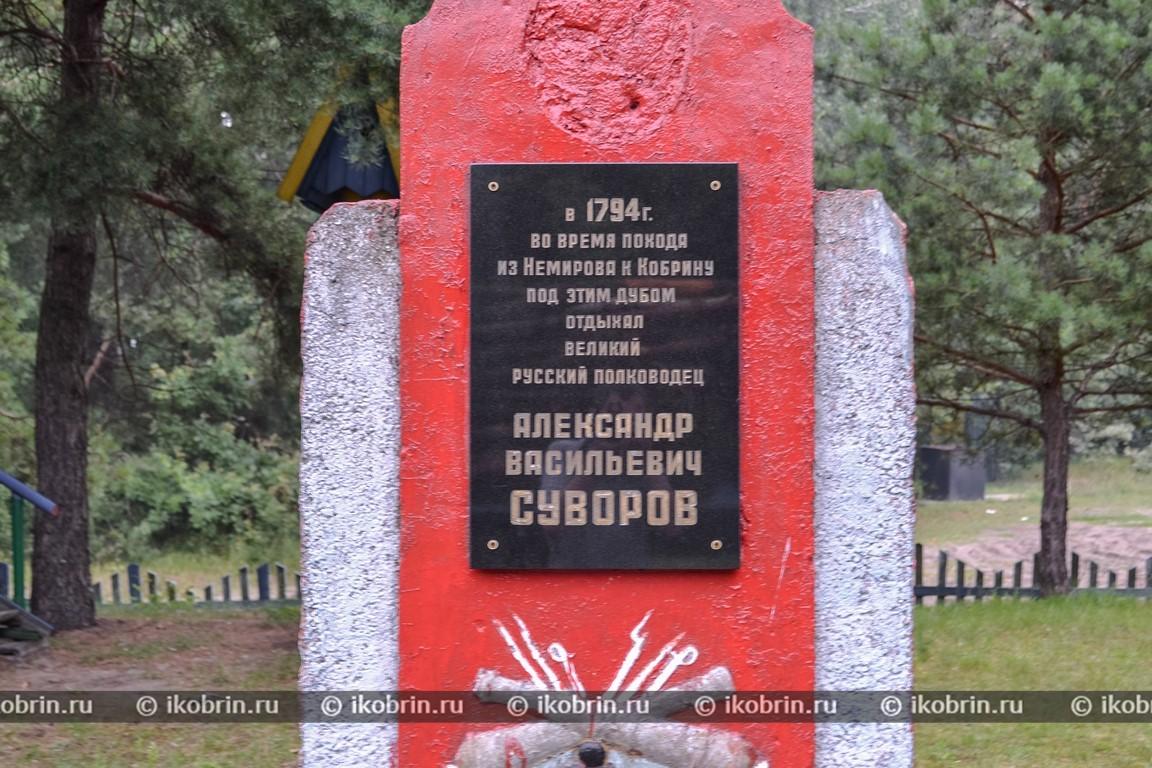 Картинки по запросу Суворовский дуб вблизи д. Дивин