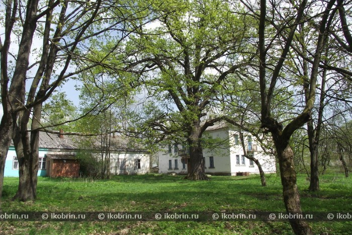 Картинки по запросу деревня Грушево: парк Мари Радзевич